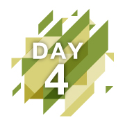day-4-reveal-fast.gif