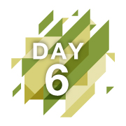 day-6-reveal-fast-final.gif