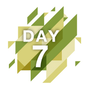 day-7-reveal-fast.gif